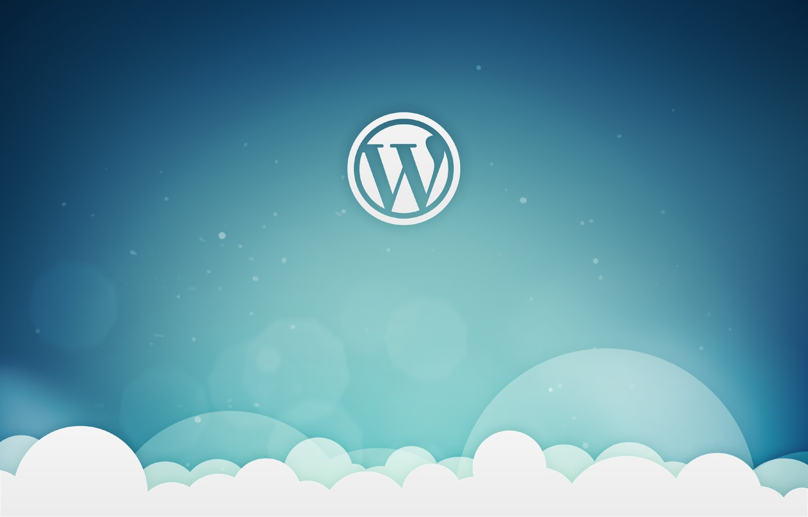 The importance of an optimized wordpress hosting